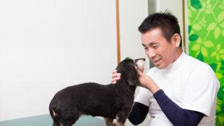 先生と犬_2