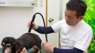 5.時には鍼を通じて電気を通す電気鍼を行ないます。6.全体の脈が整ったところでレーザー治療(温熱療法)をします。